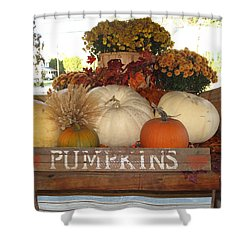 Pumpkin Welcome  Shower Curtain by Barbara McDevitt
