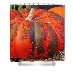 Shower Curtain featuring the photograph Pumpkins by Cynthia Guinn