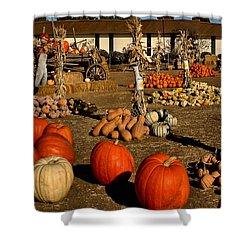 Shower Curtain featuring the photograph Pumpkins by Michael Gordon