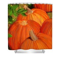 Pumpkins Pumpkins Everywhere Shower Curtain