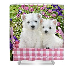 Puppies In A Pink Basket Shower Curtain by Greg Cuddiford