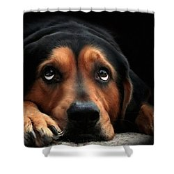 Shower Curtain featuring the mixed media Puppy Dog Eyes by Christina Rollo