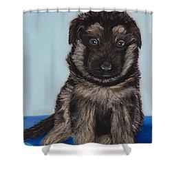 Puppy - German Shepherd Shower Curtain by Anastasiya Malakhova
