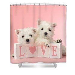 Puppy Love Shower Curtain by Greg Cuddiford