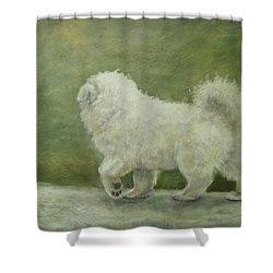 Puppy Struttin' Shower Curtain by Elizabeth Ellis