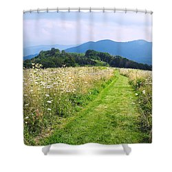 Purchase Knob Shower Curtain by Melinda Fawver