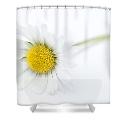 Pure Shower Curtain by Anne Gilbert