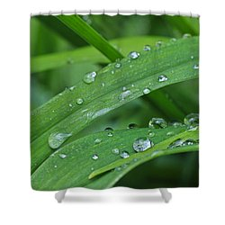 Pure Green Shower Curtain by Julie Andel