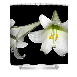 Shower Curtain featuring the photograph Pure White Easter Lilies by Rose Santuci-Sofranko
