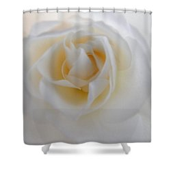 Shower Curtain featuring the photograph Purity by Deb Halloran