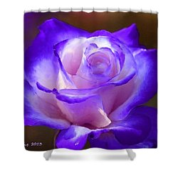 Purple And Pink Rose Shower Curtain by Bruce Nutting
