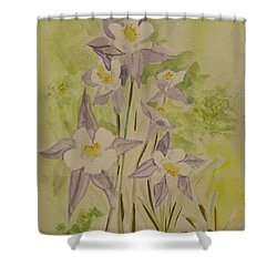 Purple And White Columbines Shower Curtain