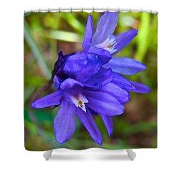 Purple Blue Dicks In Park Sierra-ca Shower Curtain by Ruth Hager
