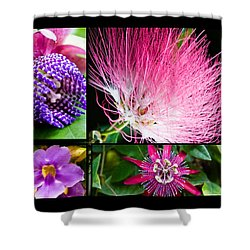 Purple Bouquet Shower Curtain by Melinda Ledsome