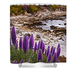 Purple California Coastline Shower Curtain