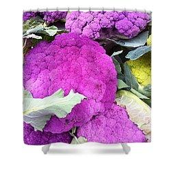 Purple Cauliflower Shower Curtain by Susan Garren