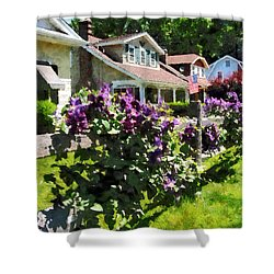 Purple Clematis On Rustic Fence Shower Curtain by Susan Savad