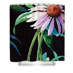 Purple Cone Flower 2 Shower Curtain by Hanne Lore Koehler