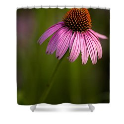 Purple Cone Flower Portrait Shower Curtain