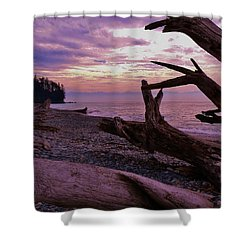 Shower Curtain featuring the photograph Purple Dreams In Bc by Barbara St Jean