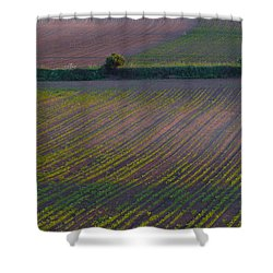 Shower Curtain featuring the photograph Purple Fields by Evelyn Tambour