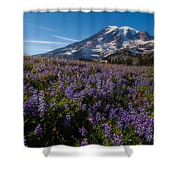 Purple Fields Forever And Ever Shower Curtain