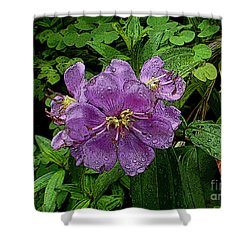 Purple Flower Shower Curtain by Sergey Lukashin