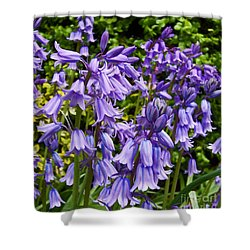 Shower Curtain featuring the photograph Purple Flowers by Gena Weiser
