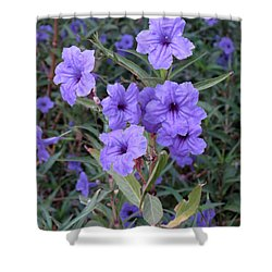 Purple Flowers Shower Curtain by Laurel Powell