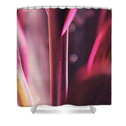 Purple Glow Shower Curtain by Jenny Rainbow