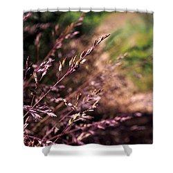 Purple Grass Shower Curtain by Kaleidoscopik Photography