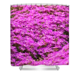 Purple Hills Shower Curtain by Amy Gallagher