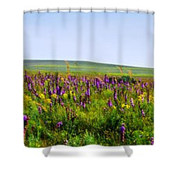 Purple Hills Shower Curtain