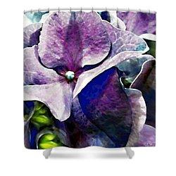 Purple Hydrangea  Flower Shower Curtain by Danielle  Parent