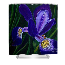 Shower Curtain featuring the painting Purple Iris by Barbara Griffin