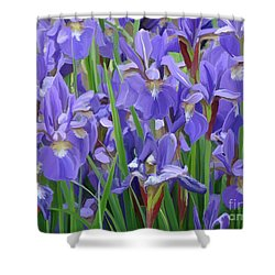 Shower Curtain featuring the painting Purple Iris Garden by Tim Gilliland