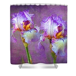 Purple Iris Shower Curtain by Lena Auxier
