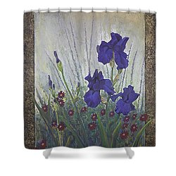 Purple Iris Shower Curtain by Rob Corsetti