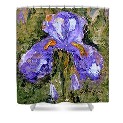 Purple Iris2 Shower Curtain
