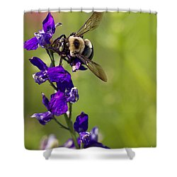 Purple Majesty Shower Curtain