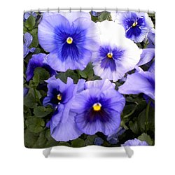 Shower Curtain featuring the photograph Purple Morning Glory by Fortunate Findings Shirley Dickerson