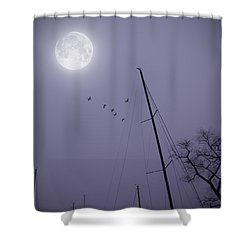 Purple Night Shower Curtain by Brian Wallace