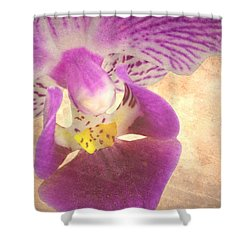 Purple Orchid 1 Shower Curtain by Rudy Umans
