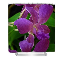 Purple Over Green Shower Curtain