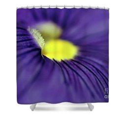 Purple Pansy Shower Curtain by Sabrina L Ryan