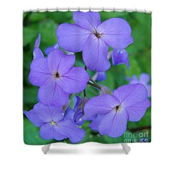 Shower Curtain featuring the photograph Purple Passion by Sara  Raber