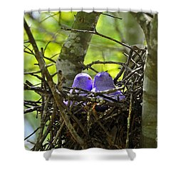 Purple Peeps Pair Shower Curtain