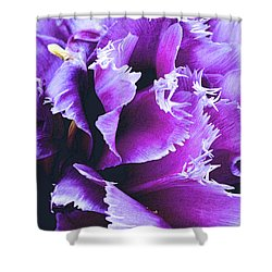 Shower Curtain featuring the photograph Purple Perfection by Nadalyn Larsen