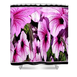Purple Petunias Abstract Shower Curtain by Rose Santuci-Sofranko