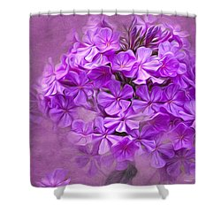 Purple Phlox Shower Curtain